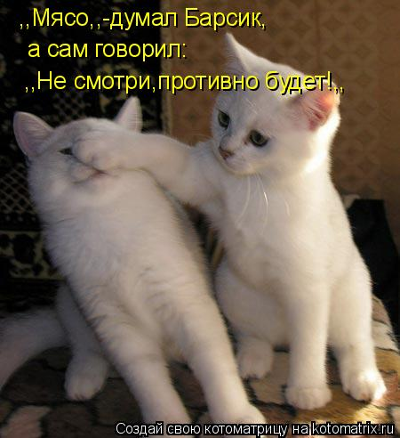 Котоматрица: ,,Мясо,,-думал Барсик, а сам говорил: ,,Не смотри,противно будет!,,