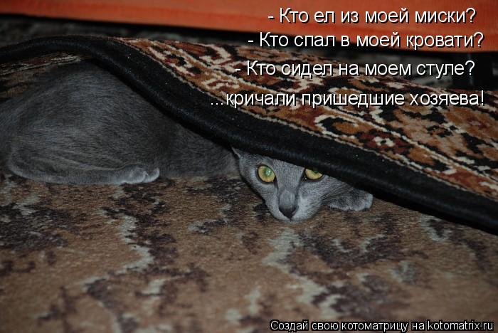 Котоматрица: - Кто ел из моей миски? - Кто спал в моей кровати? - Кто сидел на моем стуле? ...кричали пришедшие хозяева!