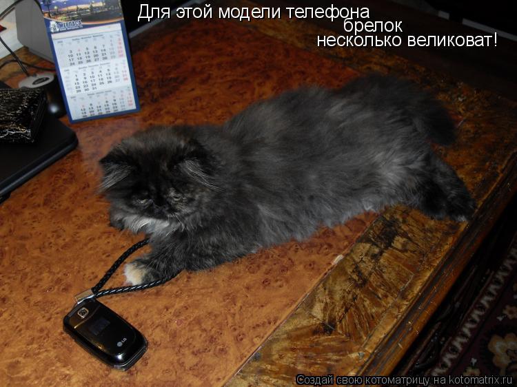Котоматрица: Для этой модели телефона брелок несколько великоват!