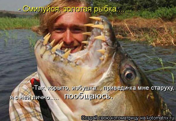 Котоматрица: - Смилуйся, золотая рыбка....... -Так, корыто, избушка... приведи-ка мне старуху,  я с ней лично.....  пообщаюсь.