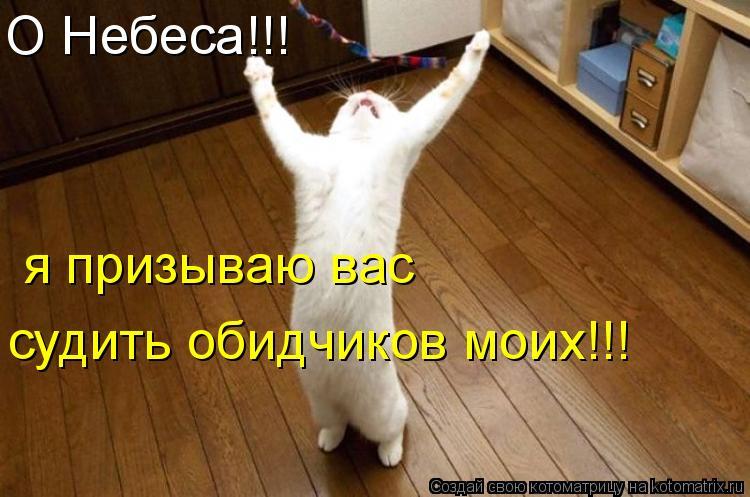 Котоматрица: О Небеса!!! я призываю вас судить обидчиков моих!!!