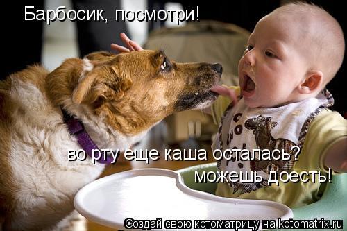Котоматрица: Барбосик, посмотри! во рту еще каша осталась? можешь доесть!