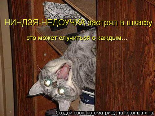 Котоматрица: НИНДЗЯ-НЕДОУЧКА застрял в шкафу это может случиться с каждым...