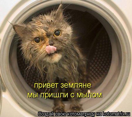 Котоматрица: привет земляне  мы пришли с мылом