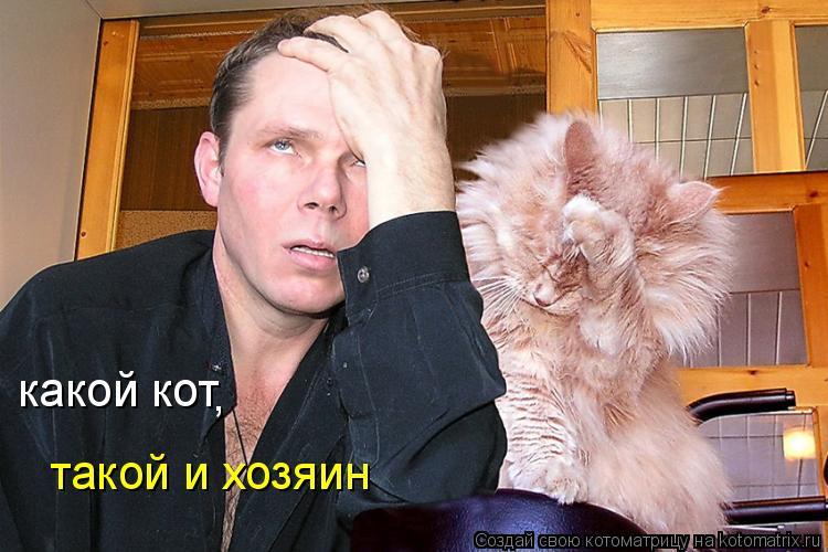 Котоматрица: какой кот , такой и хозяин
