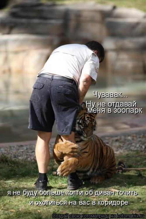 Котоматрица: Чувааак... Ну не отдавай меня в зоопарк я не буду больше когти об диван точить и охотиться на вас в коридоре