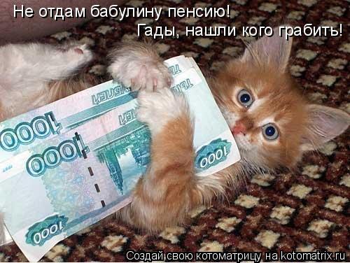 Котоматрица: Не отдам бабулину пенсию!  Гады, нашли кого грабить!