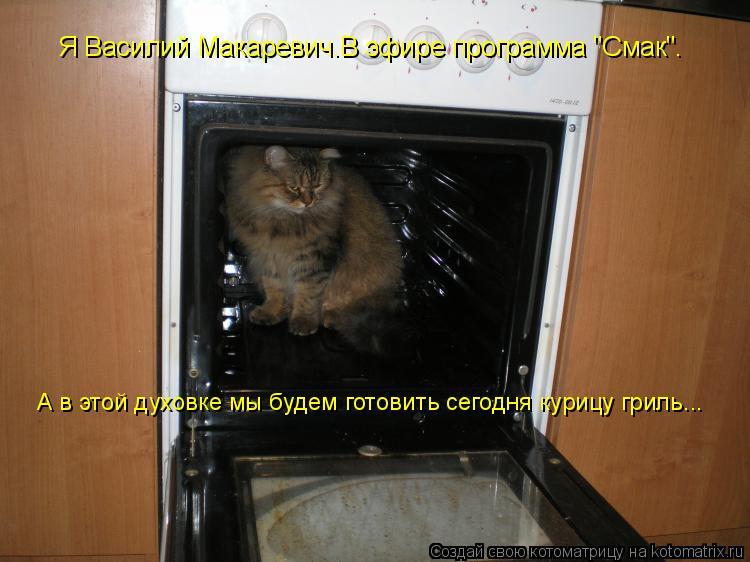 """Котоматрица: Я Василий Макаревич.В эфире программа """"Смак"""". А в этой духовке мы будем готовить сегодня курицу гриль..."""