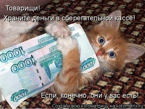 Котоматрица: Товарищи!  Храните деньги в сберегательной кассе! Если, конечно, они у вас есть!