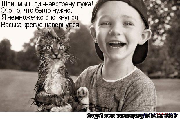 Котоматрица: Я немножечко споткнулся, Васька крепко навернулся! Шли, мы шли -навстречу лужа! Это то, что было нужно.