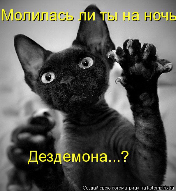 Котоматрица: Молилась ли ты на ночь, Дездемона...?