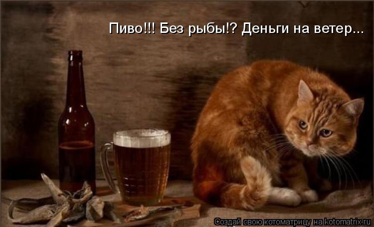 Котоматрица: Пиво!!! Без рыбы!? Деньги на ветер...
