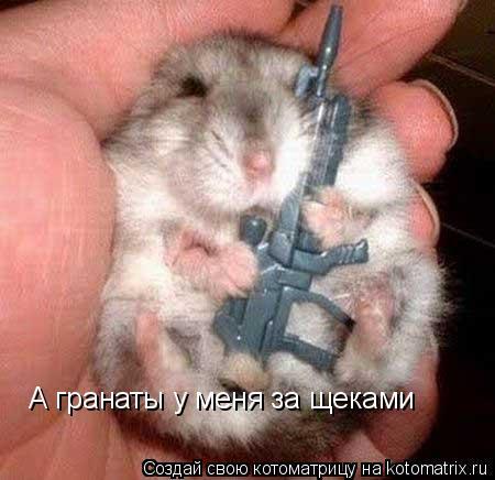 Котоматрица: А гранаты у меня за щеками
