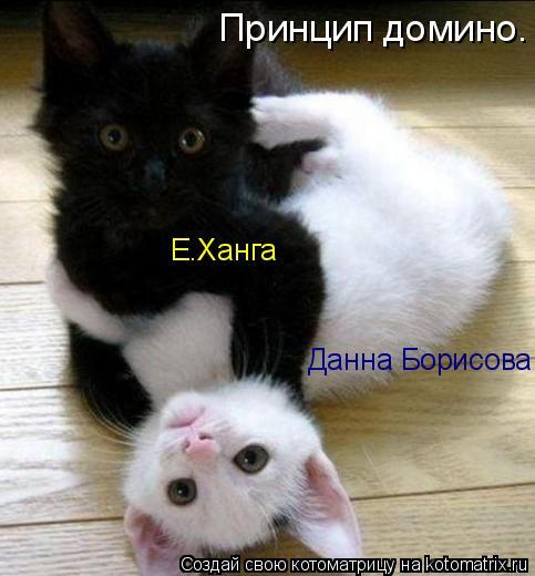 Котоматрица: Принцип домино. Е.Ханга Данна Борисова