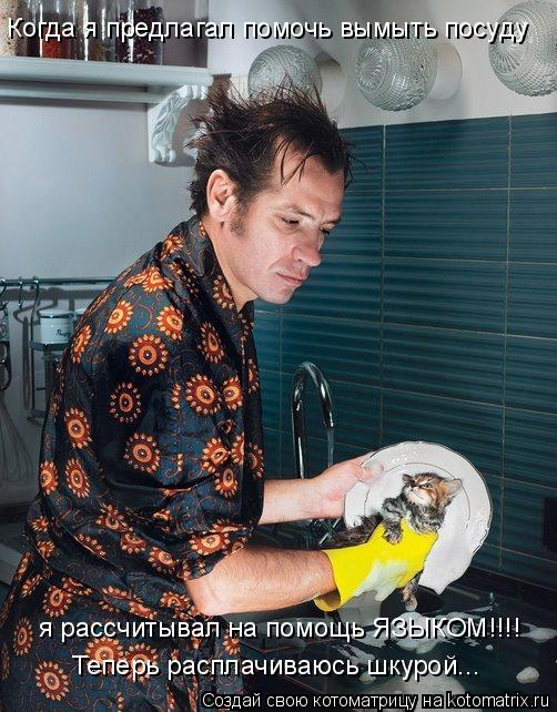 Котоматрица: Когда я предлагал помочь вымыть посуду я рассчитывал на помощь ЯЗЫКОМ!!!! Теперь расплачиваюсь шкурой...