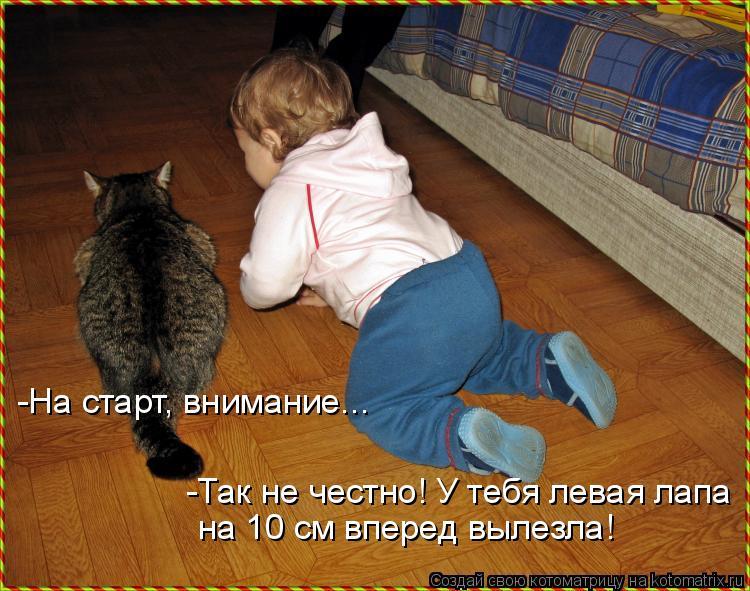 Котоматрица: -На старт, внимание... Так не честно! У тебя левая лапа на 10 см вперед вылезла! -На старт, внимание...  -Так не честно! У тебя левая лапа  на 10 см в