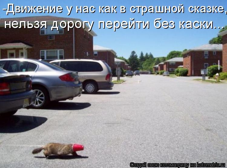 Котоматрица: -Движение у нас как в страшной сказке, нельзя дорогу перейти без каски...