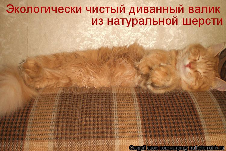 Котоматрица: Экологически чистый диванный валик из натуральной шерсти