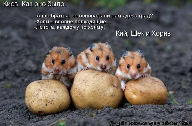 Котоматрица: Киев: Как оно было. -А шо братья, не основать ли нам здесь град? -Холмы вполне подходящие... -Лепота, каждому по холму! Кий, Щек и Хорив