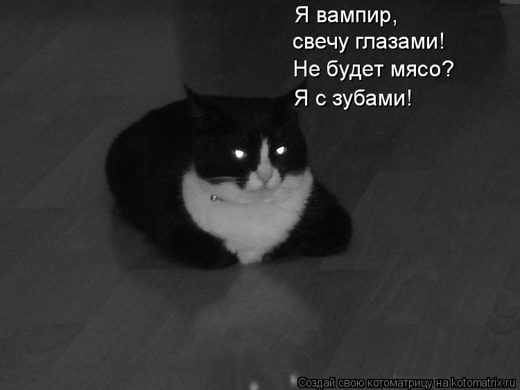 Котоматрица: Я вампир,  свечу глазами! Не будет мясо? Я с зубами!