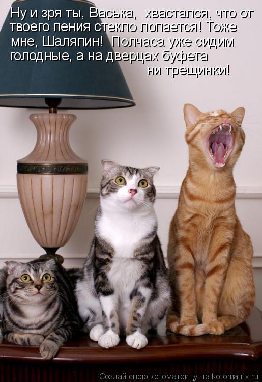 Котоматрица: Ну и зря ты, Васька,  хвастался, что от твоего пения стекло лопается! Тоже мне, Шаляпин!  Полчаса уже сидим голодные, а на дверцах буфета  ни тр
