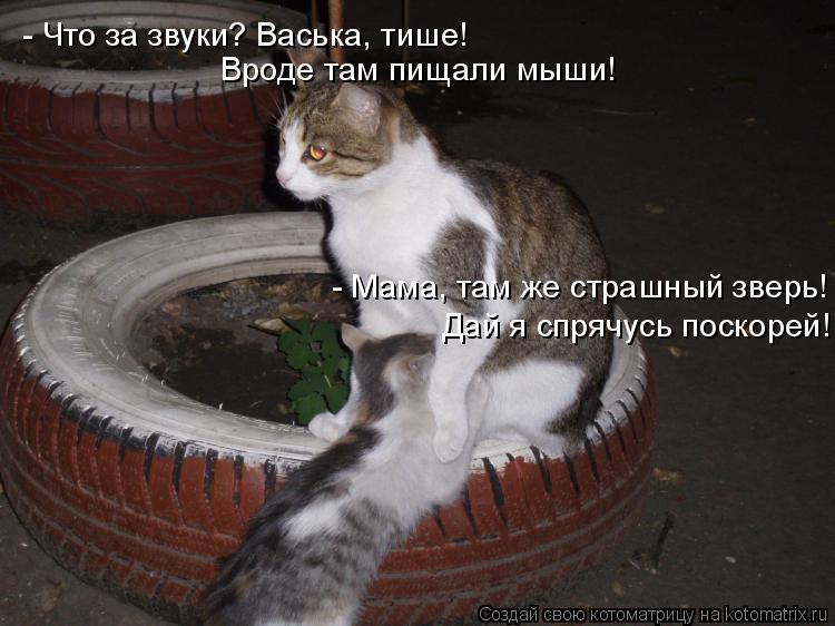 Котоматрица: - Что за звуки? Васька, тише! Вроде там пищали мыши! - Мама, там же страшный зверь! Дай я спрячусь поскорей!