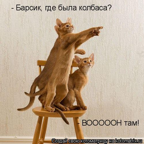 Котоматрица: - ВОООООН там! - Барсик, где была колбаса?