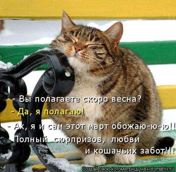 Котоматрица: - Вы полагаете скоро весна? - Да, я полагаю! - Ах, я и сам этот март обожаю-ю-ю!!!! Полный  сюрпризов,  любви  и кошачьих забот!!!