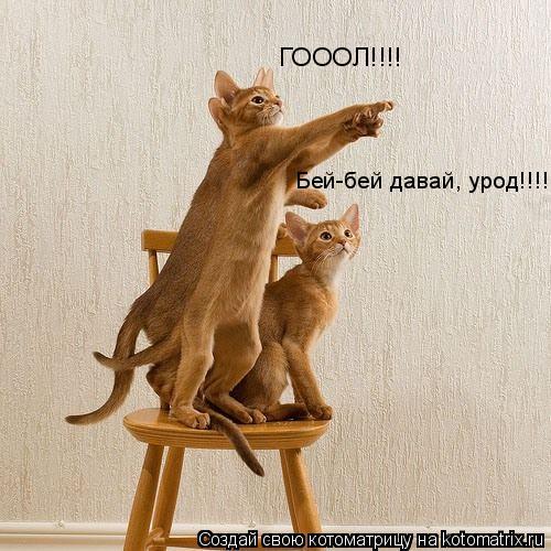 Котоматрица: Бей-бей давай, урод!!!! ГОООЛ!!!!