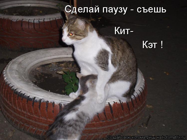 Котоматрица: Кит- Кэт ! Сделай паузу - съешь