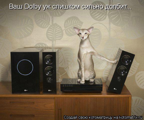 Котоматрица: Ваш Dolby уж слишком сильно долбит...