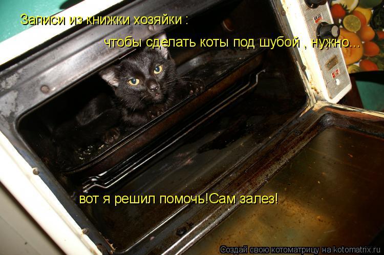 Котоматрица: Записи из книжки хозяйки : чтобы сделать коты под шубой , нужно... вот я решил помочь!Сам залез!