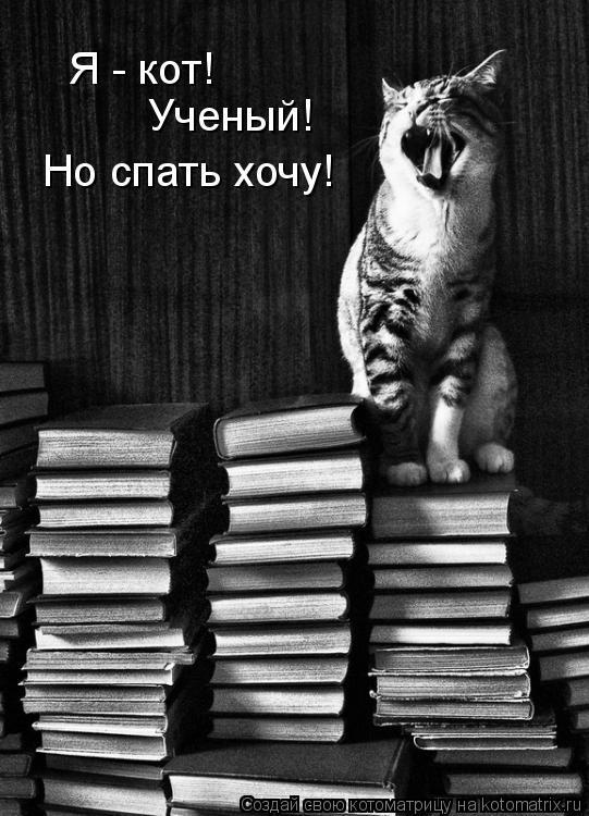 Котоматрица: Я - кот! Ученый! Но спать хочу!