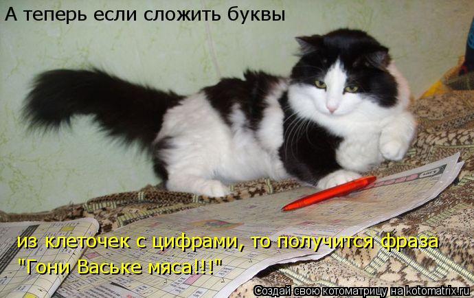 """Котоматрица: А теперь если сложить буквы из клеточек с цифрами, то получится фраза """"Гони Ваське мяса!!!"""""""