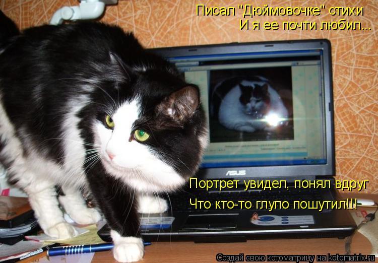 """Котоматрица: Писал """"Дюймовочке"""" стихи И я ее почти любил... Портрет увидел, понял вдруг Что кто-то глупо пошутил!!!"""