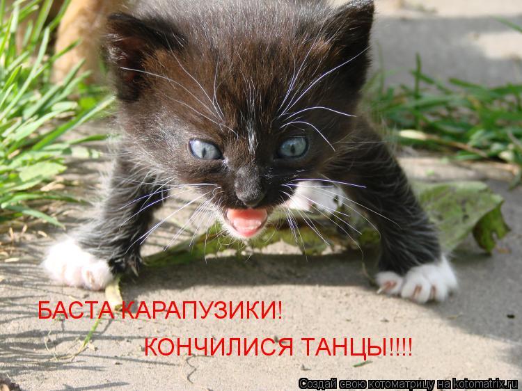 Котоматрица: БАСТА КАРАПУЗИКИ!  КОНЧИЛИСЯ ТАНЦЫ!!!!