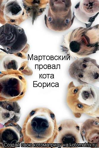 Котоматрица: Мартовский  провал кота Бориса