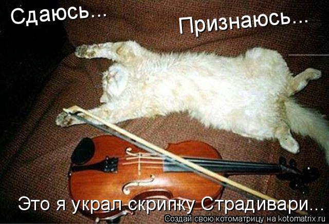 Котоматрица: Сдаюсь... Признаюсь... Это я украл скрипку Страдивари...