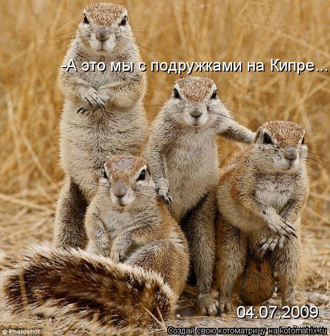 Котоматрица: -А это мы с подружками на Кипре... 04.07.2009