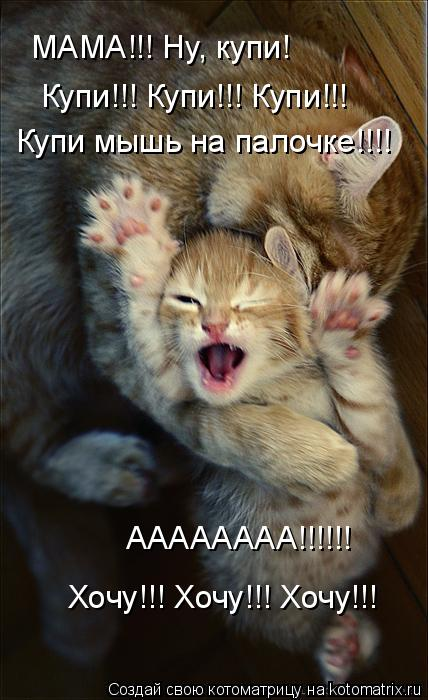 http://kotomatrix.ru/images/lolz/2009/10/15/377963.jpg
