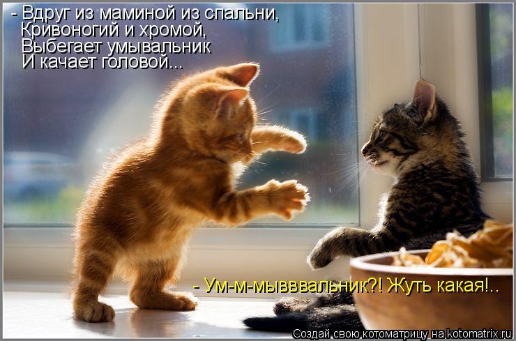 Котоматрица: - Вдруг из маминой из спальни, Кривоногий и хромой, Выбегает умывальник И качает головой... - Ум-м-мывввальник?! Жуть какая!..