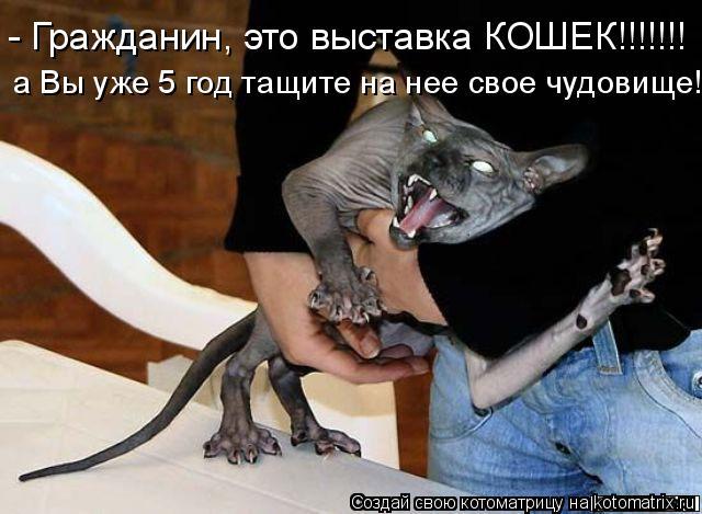 Котоматрица: - Гражданин, это выставка КОШЕК!!!!!!! а Вы уже 5 год тащите на нее свое чудовище!