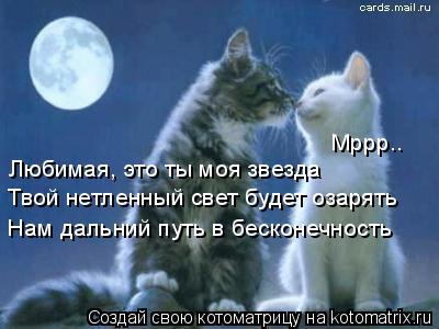 Котоматрица: Любимая, это ты моя звезда Твой нетленный свет будет озарять Нам дальний путь в бесконечность Мррр..