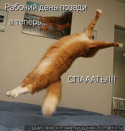 Котоматрица: Рабочий день позади а теперь... СПАААТЬ!!!!