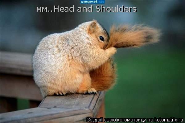 Котоматрица: мм..Head and Shoulders