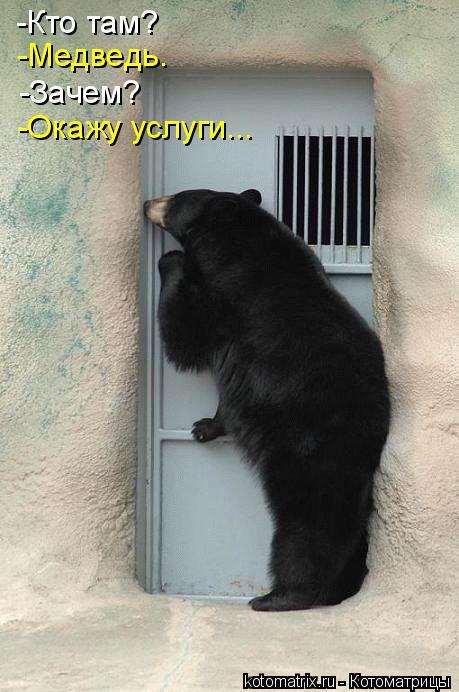 -Кто там? -Медведь. -Зачем? -Окажу услуги...