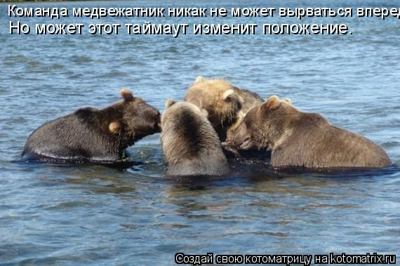 Котоматрица: Команда медвежатник никак не может вырваться вперед  Но может этот таймаут изменит положение.