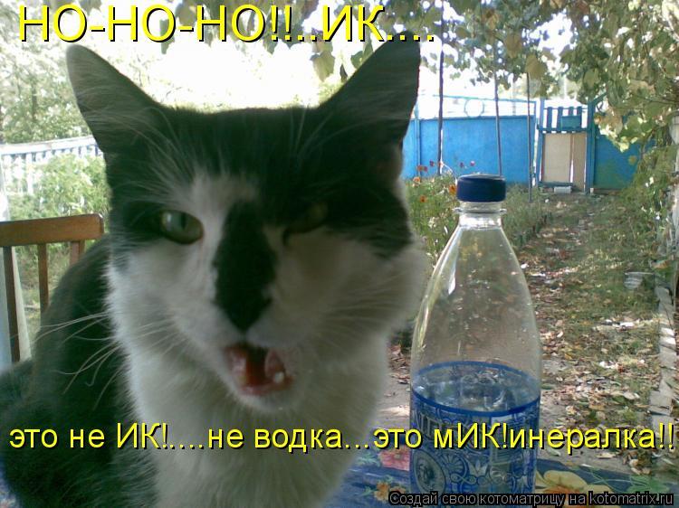 Котоматрица: НО-НО-НО!!..ИК.... это не ИК!....не водка...это мИК!инералка!!