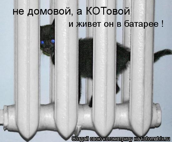 Котоматрица: не домовой, а КОТовой и живет он в батарее !