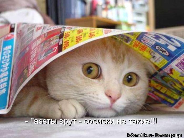 Котоматрица: - Газеты врут - сосиски не такие!!!